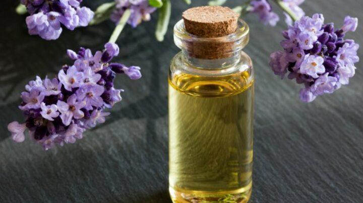 Tumbuhan yang mengandung minyak atsiri