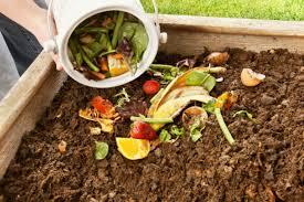 cara membuat kompos untuk tanaman